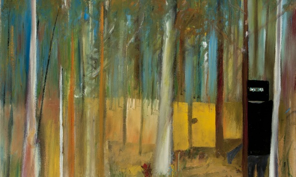 Sidney Nolan's Kelly paintings at CMAG